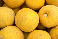 Free Melons Royalty Free Stock Images - 20580069