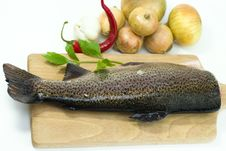 Fresh Trout With Vegetable Stock Photos