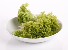 Free Lettuce Stock Images - 20580094