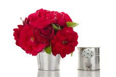 Free Red Roses In A Pail Stock Image - 20580801
