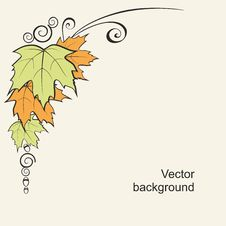 Free Background With Leaves And Curls Royalty Free Stock Images - 20580869