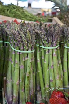 Free Asparagus Bunches Royalty Free Stock Photography - 20581647