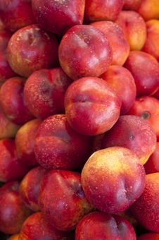 Free Red Nectarines Royalty Free Stock Image - 20581706