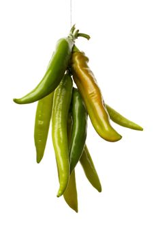 Free Green Peppers Stock Photography - 20582092