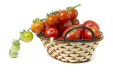 Free Tomatoes In Basket Royalty Free Stock Photos - 20582868