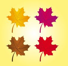 Free Autumn Leaves Stock Photography - 20585462