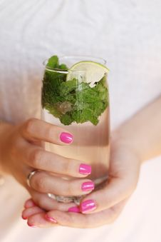 Free Mojito Royalty Free Stock Photography - 20588397