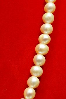 Free Pearls Royalty Free Stock Photos - 20589508