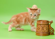 Free Ginger Kitten In Straw And Carved Mug Stock Image - 20589781