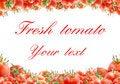 Free Fresh Tomato Stock Image - 20592621