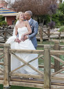 Free Bride And Groom In The Sunshine Royalty Free Stock Photography - 20592727