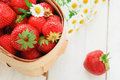 Free Fresh Strawberry In A Basket Stock Photo - 20595520