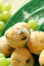 Free Muffins With Chocolate On Green Plate Royalty Free Stock Images - 20595699