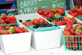 Free Strawberries And Blackberries Royalty Free Stock Photos - 20598948