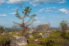 Free Stones Stock Photo - 20590120