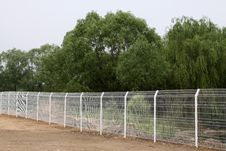 Free Barbed Wire Royalty Free Stock Photos - 20592248