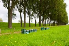 A Row Of Wooden Bee Hives In The Field Stock Photo