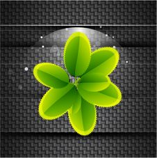 Free Leaves On Carbon Background Royalty Free Stock Photo - 20593455