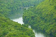 Bridge To The Jungle Mountain Stock Image
