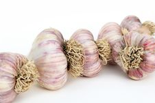 Free Garlic Bulbs Close Up Stock Photography - 20595022