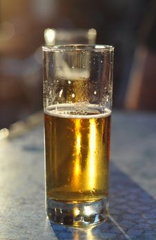 Free Beer Royalty Free Stock Image - 20595566