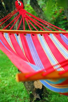 A Hammock In The Garden Royalty Free Stock Image