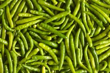 Free Green Chillies Royalty Free Stock Photography - 20598587