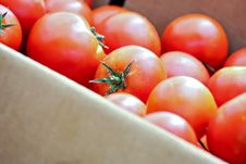 Free Box Of Tomatoes Stock Photography - 20598952