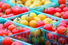 Free Red And Gold Cherry Tomatoes Stock Photos - 20598973