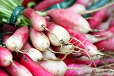Free Bundle Of Radishes Royalty Free Stock Image - 20599006