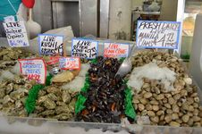 Free Pike Place Market Clam, Muscles, Oysters Stock Photography - 20599182