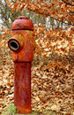 Free Rusty Fire Hydrant Stock Photography - 2066472