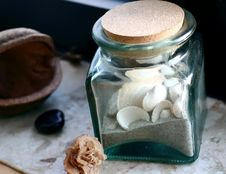 Free Shell In Glass Royalty Free Stock Photos - 2061208