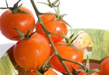 Free Tomato Royalty Free Stock Photos - 2062938
