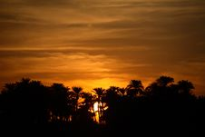 Free Sunset With Palm Trees Stock Image - 2066661