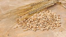 Free Cereal Grains On Wooden Board Stock Photo - 20600830