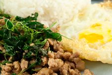 Stir Fried Pork Whit Basil Royalty Free Stock Image