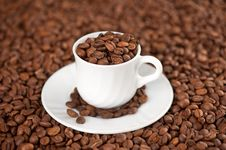 Free Cup Of Coffee Beans Stock Photo - 20601550