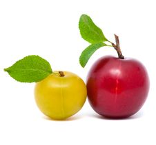 Free Two Fresh Plums  With Leafs Royalty Free Stock Images - 20602399