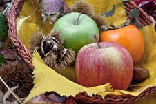 Free Autumnal Fruit Composition In A Basket Stock Photos - 20602473