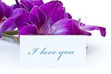 Free Declaration Of Love Stock Photos - 20603213