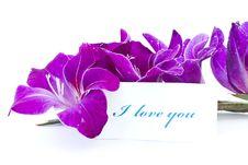 Free Declaration Of Love Stock Photos - 20603233