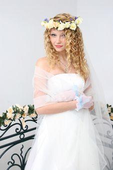 Free Bride. Royalty Free Stock Photo - 20606965