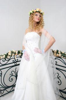 Free Bride. Stock Photography - 20606972