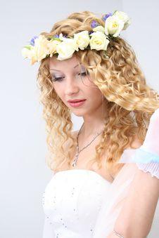 Free Bride. Stock Photos - 20606983