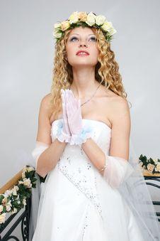 Free Bride. Stock Photos - 20607023