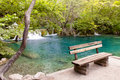 Free Wooden Bench Stock Image - 20614551