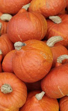 Free Hokkaido Pumpkins Stock Image - 20610061