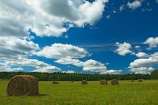 Free Green Field With Haystacks Royalty Free Stock Images - 20611189