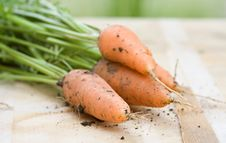 Fresh Carrots On Wooden Board Royalty Free Stock Photos